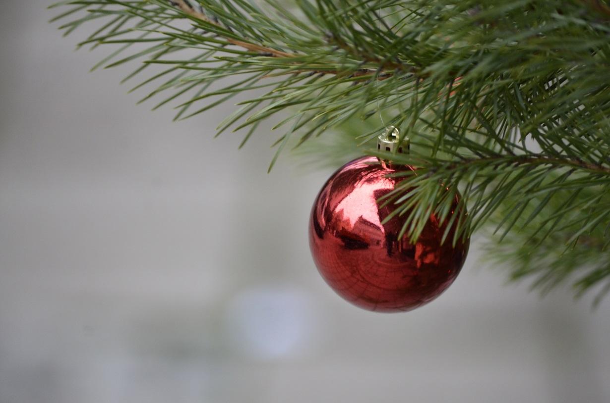 Weihnachtsbaum verschwunden: Hat Hof einen Grinch?
